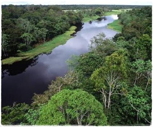 10 sungai terbesar di dunia